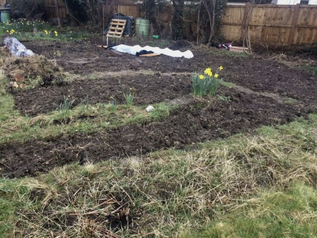 allotment_634